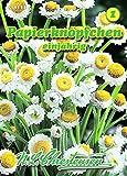 Ammobium alatum, Papierknöpfchen einjährig N.L.Chrestensen Samen 581225-B