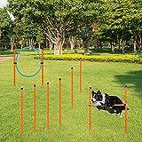 X XBEN Agility Ausrüstungs Set für Hunde – Hindernisse mit Hundetunnel, geflochtene Stangen, Springring, Hürdenstange, verstellbare Höhe, konische Fässer, 3 Verschiedene Kombinationen für mehr Spaß