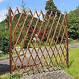 EIIDJFF Zaun Zierzaun Blumentopfhalter Gartenzaun Animal Barrier Garden Border Randdekoration Zäune für Indoor Outdoor Garden 529(Size:250x120cm)