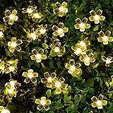 DHTOMC Solarleuchte Pfirsichblüte, solarbetriebene LED-Lichterkette, 1,2 V, Solargirlanden, Garten, Weihnachtsdekoration für den Außenbereich (Farbe: 2, Größe: Einheitsgröße)