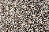 25 kg gewaschener bunter Rheinkies 16-32 mm - Buntkies Teichkies Waschkies Zen Garten Lieferung KOSTENLOS