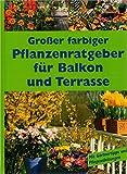 Großer farbiger Pflanzenratgeber für Balkon und Terrasse. Die 200 schönsten Balkon- und Terrassenpflanzen von A-Z