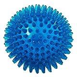 PUPWONG Hundeball Quietschend Hundespielzeug Kauen Spielzeug Quietschball Kauspielzeug für Große und Kleine Hunde, Kauen und Zahnreinigungs Ungiftig (L, Blau)