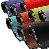 etm Schmutzfangmatte ColorLine | Türmatte in vielen Größen | Fußmatte für Innenbereich | Rutschfester Teppich für Flur, Haustür, Eingang, Eingangsbereich, Vorzimmer - Schwarz 120x180 cm