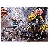 Moxiaa 5D Diamant Malerei Erwachsene Kinder Fahrrad DIY Diamant Malerei Vollbohrer Stickerei Malerei Kreuzstich Leinwand Kunst Handwerk für Haus,Wand Und Eingang Dekorationen 50x70cm