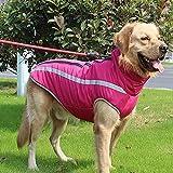 Yanmeng. Hundejacke mit Gurt, Wind- Hundeweste mit reflektierenden Streifen, geeignet for mittelgroße große Hunde, warme und Bequeme Hundesportweste, Wintermantel for Hunde, warmen Hals Hund Kleidung