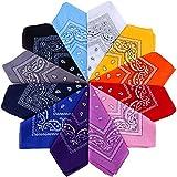 Anpro 12 Stück Bandana, mehrfarbig, für Haare, Hals, Kopf, Taschentücher, Paisley-Design, aus 100% Baumwolle