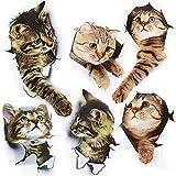 FYSL 6 Stück Süß 3D Katzen Wandtattoo Kombination kühlschrankaufkleber türaufkleber für Badezimmer chlafzimmer,Heimdekoration