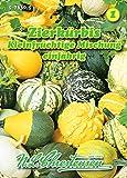 Curcurbita pepo, Zierkürbis, Kleinfrüchtige Mischung rankend N.L.Chrestensen