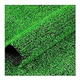 YNFNGXU Künstliches Gras, Realistische Gefälschte Gras Deluxe Synthetische Rasen Dicker Rasenhaustier Turf, Indoor- / Outdoor-Landschaft, Leicht Zu Reinigen Mit Abflusslö(Size:10mm grass height-2mx6m)