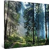 Leinwand Wandkunst Landschaftsstraße in der Waldnatur gerahmt