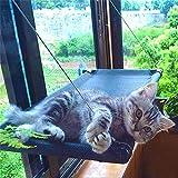 SABAN Katzen Fensterplatz | Katzen Hängematte | Fenster Katzenhängematte für Katzen bis 31 kg | Katzen Fensterliege Platz | Window Lounger Katzen mit 4 Große Saugnäpfe mit Einem Gewicht