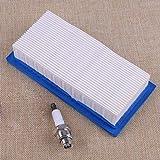 hndfhblshr 691643 Flacher Luftfilter Zündkerze Kompatibel mit Briggs & Stratton Original OEM