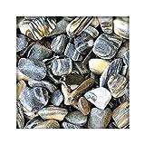 Tiger Pebbles 40/80 mm Zierkies Bunt Gartenkies Kies Kiesel Dekosteine 5 kg Sack