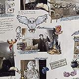 FS635_17 Harry Potter Notizbuch, Baumwollstoff, Design Basteln, Quilten, Polsterstoff, Meterware