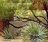 Desert Gardens of Steve M