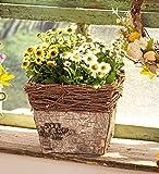 """Pflanzer """"Naturrinde"""", 25x25x19 cm, eckiges Pflanzgefäß im Korb-Design, Blumen- & Kräutertopf, Pflanztop"""