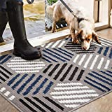 Color&Geometry Fußmatte innen 50x80cm, rutschfeste Schmutzfangmatte Waschbar Türmatte Sauberlaufmatte für Eingangsbereich, Haustür, innen und außen (Blau)