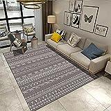 Teppiche Couch Teppich Marokkanischer geometrischer Teppich Wohnzimmer Grauer Teppich weich und waschbar Balkon Teppich Outdoor Spiele Teppich 60*160cm