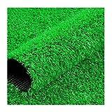 YNFNGXU Kunstrasen, Nachahmung Rasen Teppich, Gebraucht Für Außen/Innen, Kindergartentor, Gericht, Hof, Mauer, Haustiergebiet Mat Emerald Green(Size:15mm Grass height-2mx7m)