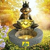 Gartenbrunnen Brunnen Zierbrunnen Zimmerbrunnen Springbrunnen Brunnen Frosch-Prinz mit LED-Licht 230V Wasserfall Wasserspiel für Garten
