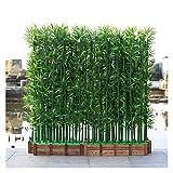 ADosdnn Künstliche Pflanzen 100/150 / 180cm Gefälschte Bambuspflanze Hotels Landschaftsbau Home Decor Innen Faux Pflanzen Zimmerpflanzen Bonsai (Color : 10pcs 150cm no Pot)