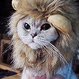 Bello Luna Löwe Haar Kopfbedeckung für kleinen Hund und Katzen, Löwe Mähne Perücke Welpen Cosplay Kostüm für Halloween Weihnachten Ostern Festival Party Ak