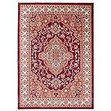 Carpeto Traditioneller Orientalischer Teppich - Kurzflor - Weicher Teppich Perser für Wohnzimmer Schlafzimmer Esszimmer - ÖKO-TEX Zertifiziert - AYLA - 300 x 400 cm - R