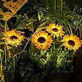 XINAYUEJP 2 Packungen Wegeleuchten Aufben Led, Gartenleuchte Solar,Solar-Sonnenblumenlicht, Verwendet Im Gartenhof Rasenhof Veranda Gehweg