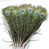 Echte natürliche Pfauenfedern, 40~45cm, tolle Dekoration für Hochzeiten, Weihnachten, Halloween, Dekoration, Haus (10)