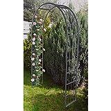 FloraBis Garten-Rosenbogen 220x120x40cm Rankhilfe Rankgitter Torbogen Pergola Spalier