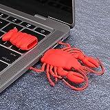 Deryang USB-Laufwerk, U-Disk, Memory Stick, USB 3.0-Schnellübertragungs-Cartoon als Geschenk für einen Freund für PC und OS X.(32G)