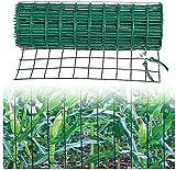 Maschendraht Zaun Green Anti-Rost-PVC-beschichtete geschweißte Drahtzaun-Quadrat-Netz geeignet für Geflügelzaunschutz Tierpflanze Gartenzaun (Color : 2.5mm, Size : 1.2x30m)