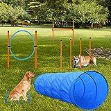 X XBEN Agility Ausrüstungs Set für Hunde, Hindernisse mit Hundetunnel,Geflochtene Stangen, Springring, Hürdenstange, Verstellbare Höhe, Konische Fässer, 3 Verschiedene Kombinationen für mehr Spaß