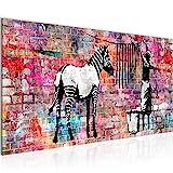 Bilder Banksy Washing Zebra Wandbild 100 x 40 cm Vlies - Leinwand Bild XXL Format Wandbilder Wohnung Deko Kunstdrucke - MADE IN GERMANY - Fertig zum Aufhängen 012912c