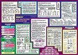 mindmemo Lernposter - Die deutschen Wortarten lernen Grammatik verständlich erklärt Lernhilfe kompakt Zusammenfassung Poster DIN A2 42x59 cm ... Lernhilfe - DinA2 PremiumE