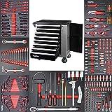 Werkzeugwagen Werkstattwagen mit 8 Schubladen davon 7 mit Werkzeug wie Schraubenschlüssel, Ratsche mit Nusskasten, Schraubendreher usw. in Soft Inlays in Carbonoptik befüllte Schubladen von Mephisto