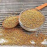 Senfsaat ganz und gelb | rein | Senf Saat | Senfkörner | Senfkorn | Senfsamen | gesund | Premium Qualität | Gelbsenf | Gewürz | Würze | naturbelassen | Frischebeutel | 1000g