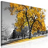 murando - Bilder Baum 90x30 cm Vlies Leinwandbild 1 TLG Kunstdruck modern Wandbilder XXL Wanddekoration Design Wand Bild - Natur Landschaft gelb grau c-B-0545-b-c