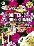 Duftende Wunderblume Gestreifte Mischung, exotische Blütenpracht mit herrlichem Duft, bienenfreundlich, Samen