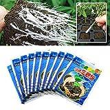Bewurzelungspulver, 10 Stück Wurzelaktivator Hochwirksames Bewurzelungshilfsmittel, Pflanzenblumen Wurzelpulver für alle Pflanzensorten