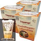 3x Fruchtfliegen-Lebendfalle Trapango®, (3er-Pack)