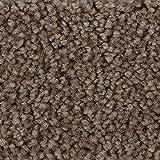BODENMEISTER BM72182 Teppichboden Auslegware Meterware Hochflor Shaggy Langflor Velour braun grau 400 cm und 500 cm breit, verschiedene Längen, Variante: 3,5 x 5