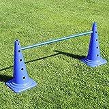 Superhund24 Kombi-Kegelhürde 50 in blau, mit Stange 100 cm, für Agility-Training (blau)